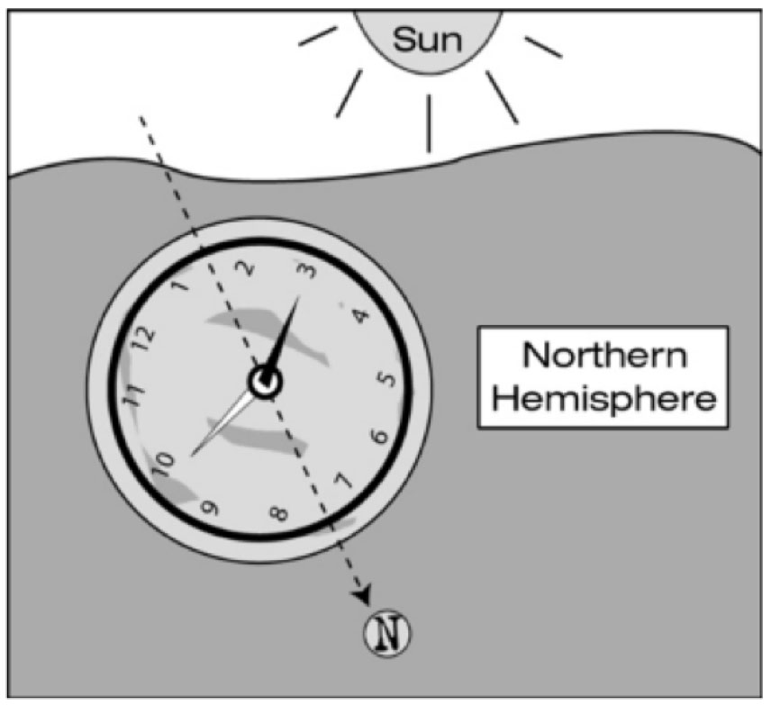 Now Imagine A Line Halfway Between The Hour Hand And The Twelve Ou0027clock  Position. In The Northern Hemisphere That Line ...